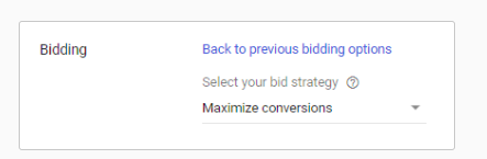 Google Ads bid strategy: maximize conversions